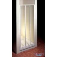 ASDP3-120 (Transp) Satin Душевая дверь