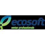 Ecosoft (США)
